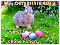 Osterhase-2018-1